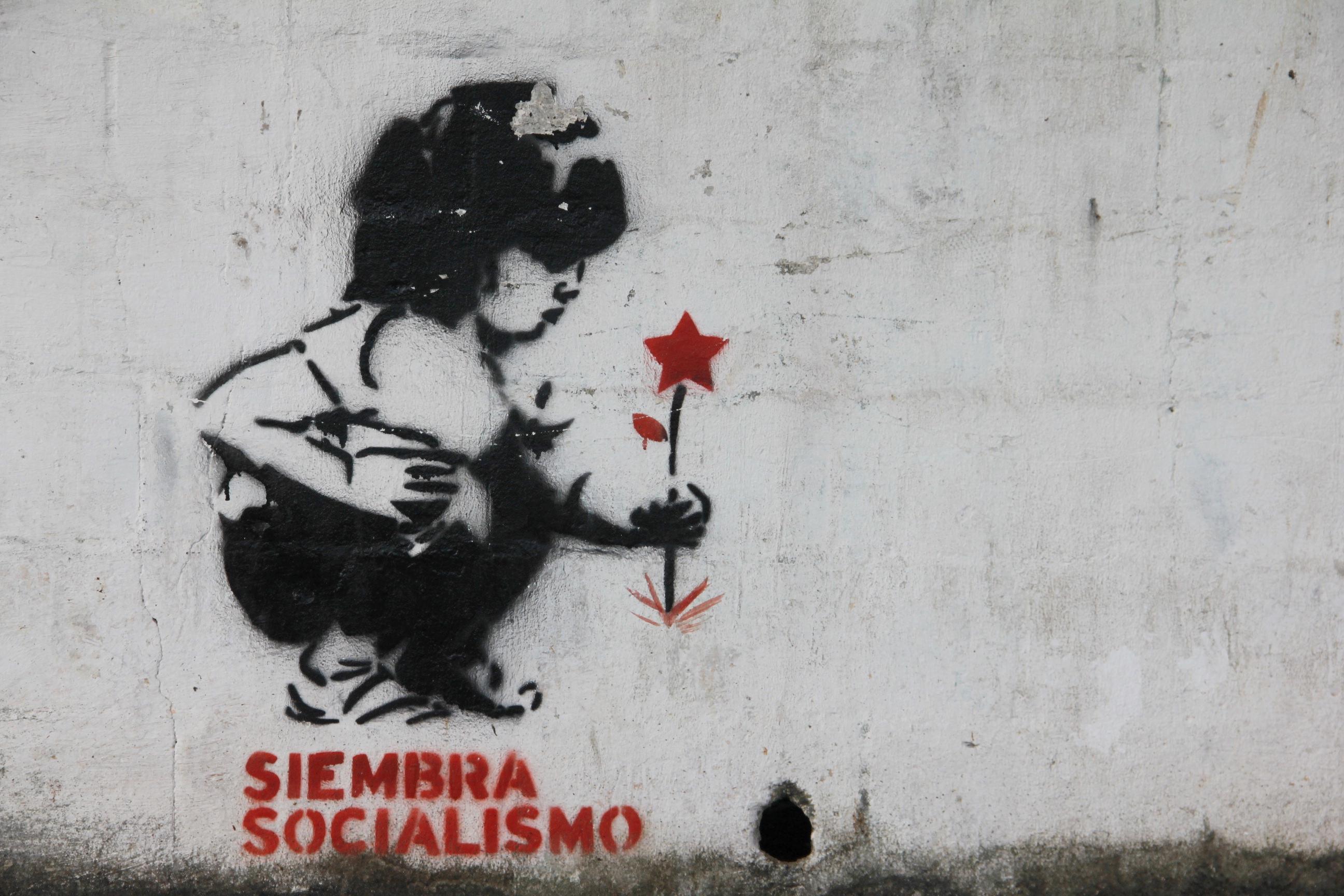الاشتراكية: التصوّر النظري والواقع