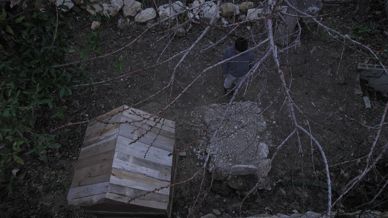 أفلامٌ قصيرة من فلسطين وعنها: جماليات وتحدّيات